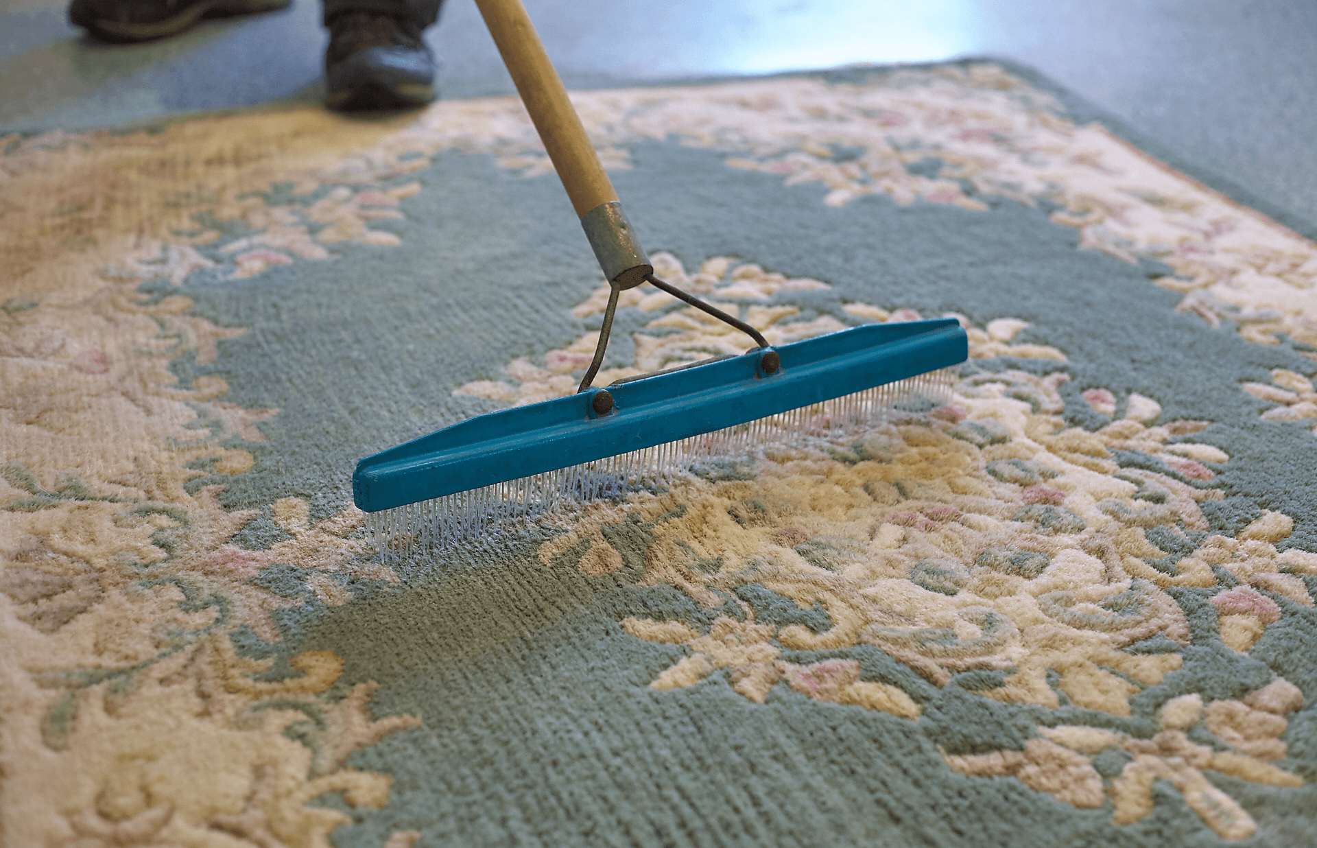 fresher fresh carpets of by cleaning cleaned rug pic leicester