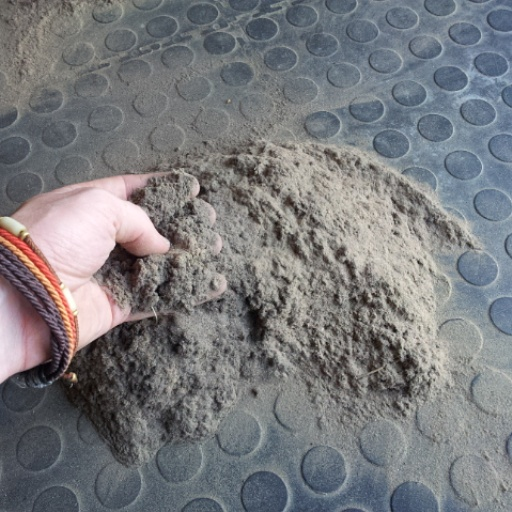 dry soil from a rug