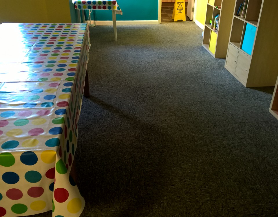 dame hannah rogers school carpet cleaning